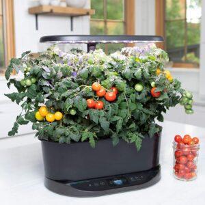 AeroGarden Bounty Indoor Hydroponic Herb Garden - Black