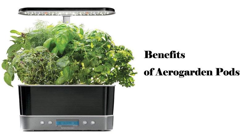 Benefits of Aerogarden Pods