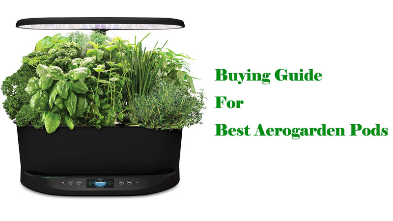 Buying Guide For Best Aerogarden Pods Canada