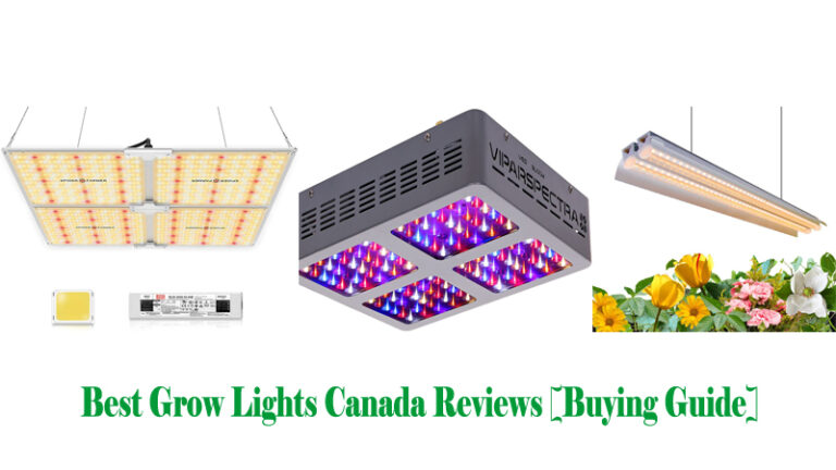 Best Grow Lights Canada Reviews [Buying Guide]
