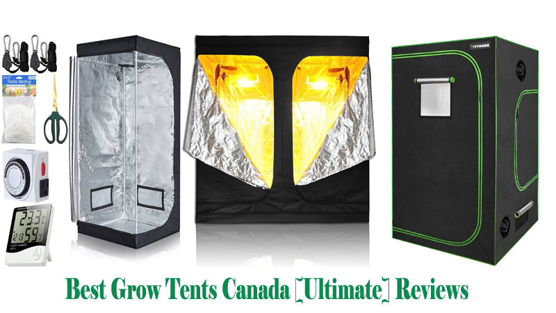 Best Grow Tents Canada [Ultimate] Reviews