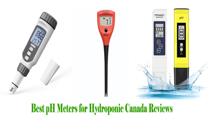 Best pH Meters for Hydroponic Canada Reviews