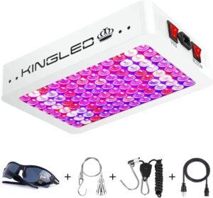 King Plus 1000W Double Chip LED Grow Light