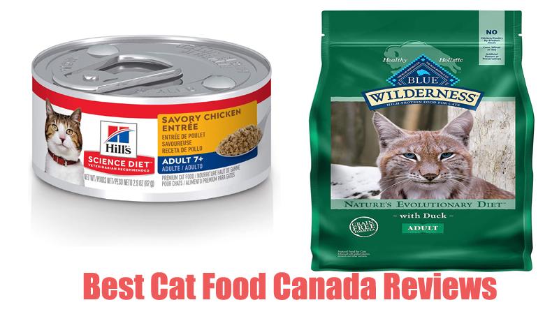 Best Cat Food Canada Reviews