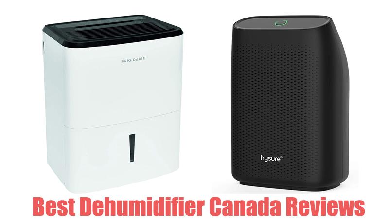 Best Dehumidifier Canada Reviews