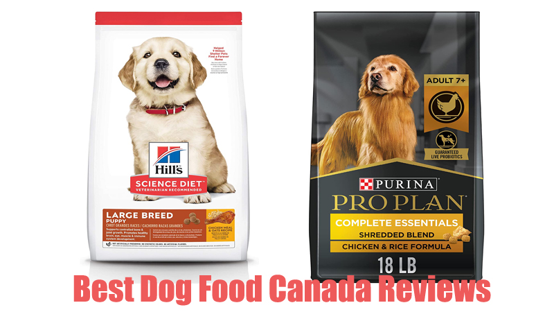Best Dog Food Canada Reviews