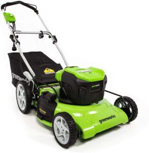Greenworks MO13B00 Lawn Mower